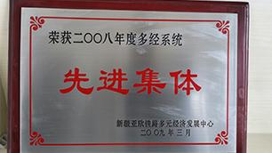 先进集体-2008年度多经系统